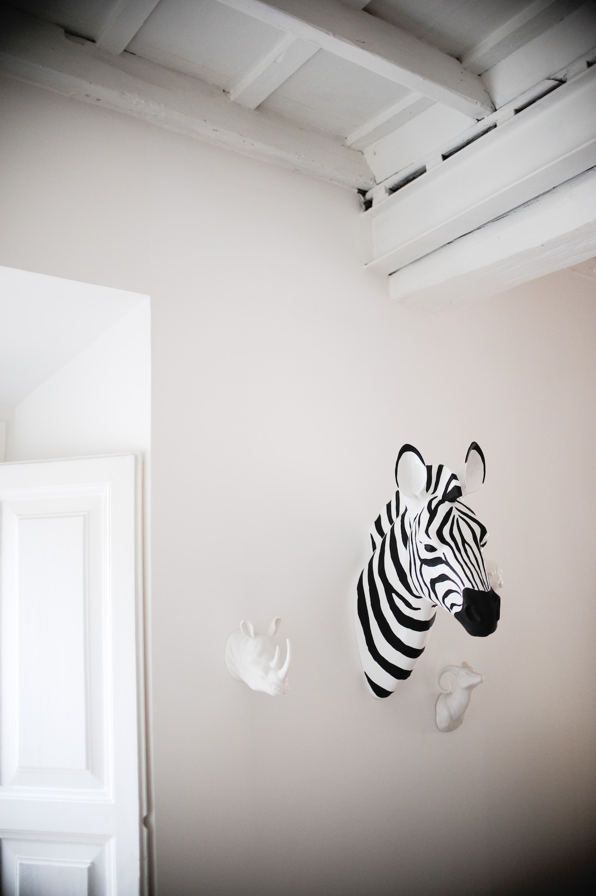 Our prided animal head collection - all ceramic, don't worry!