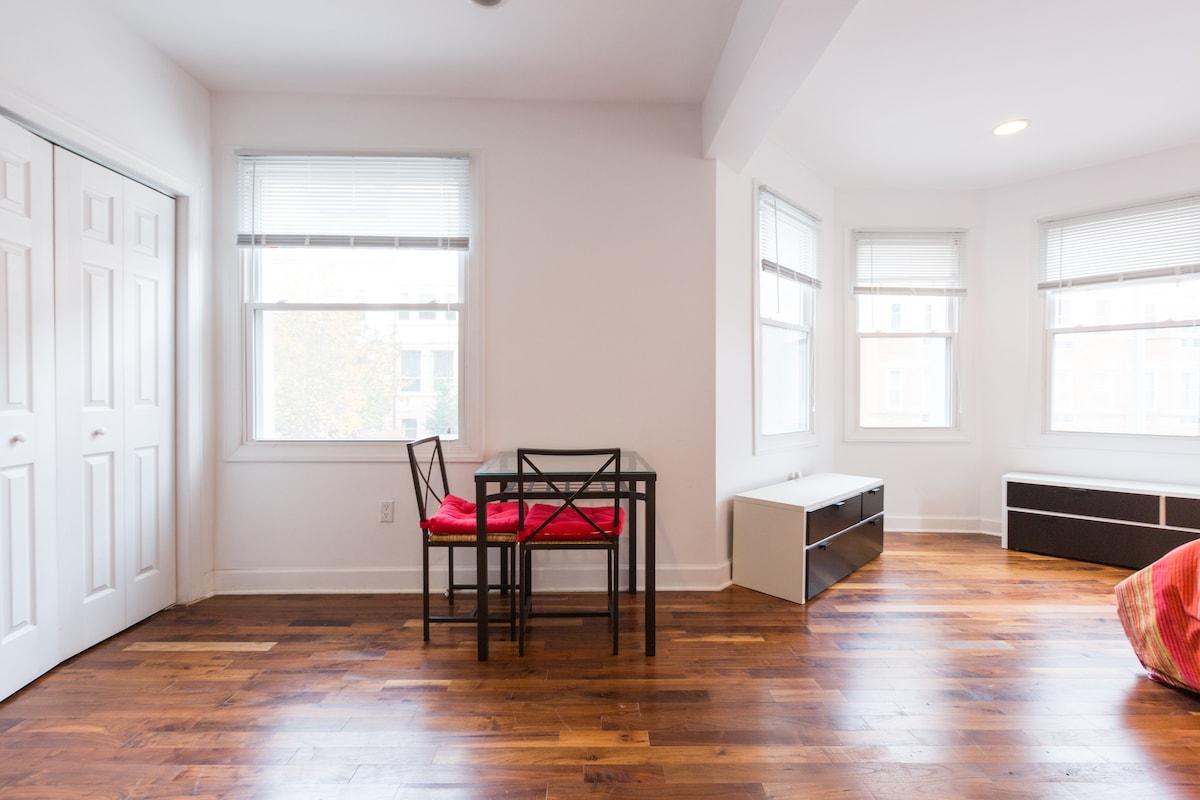 beautiful studio apartment in washington
