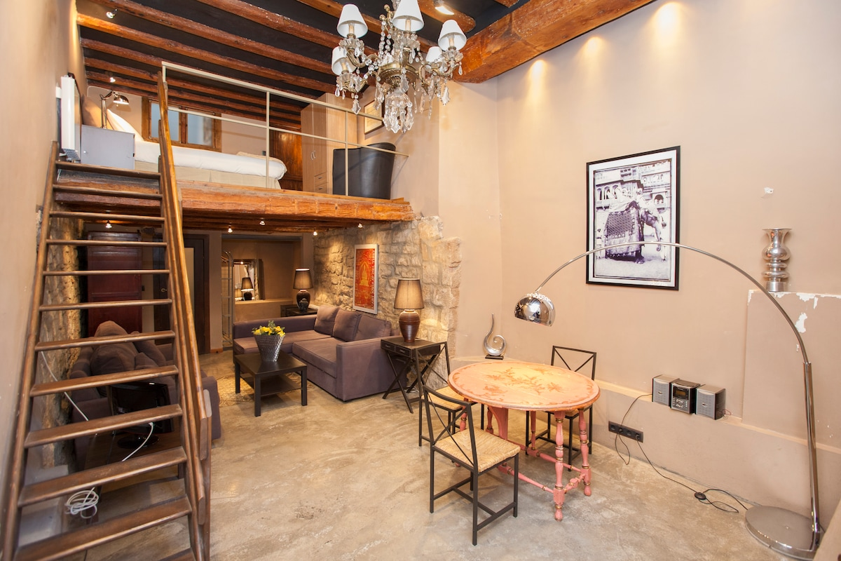 Great and nice Loft in the Born