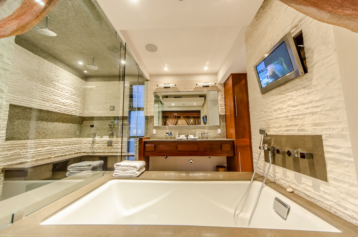 Master Spa Bathroom with massive double rain shower and body jets, hot tub, and TV!