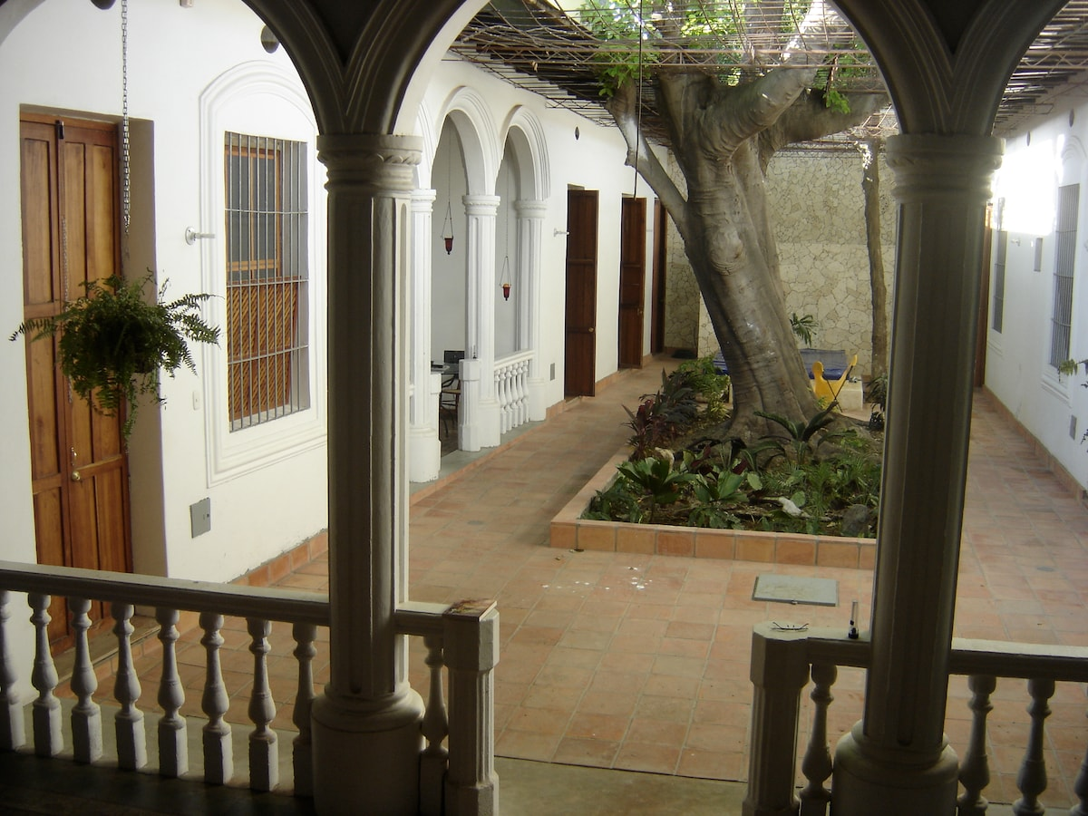 the patio, with the mamoncillo tree in the middle