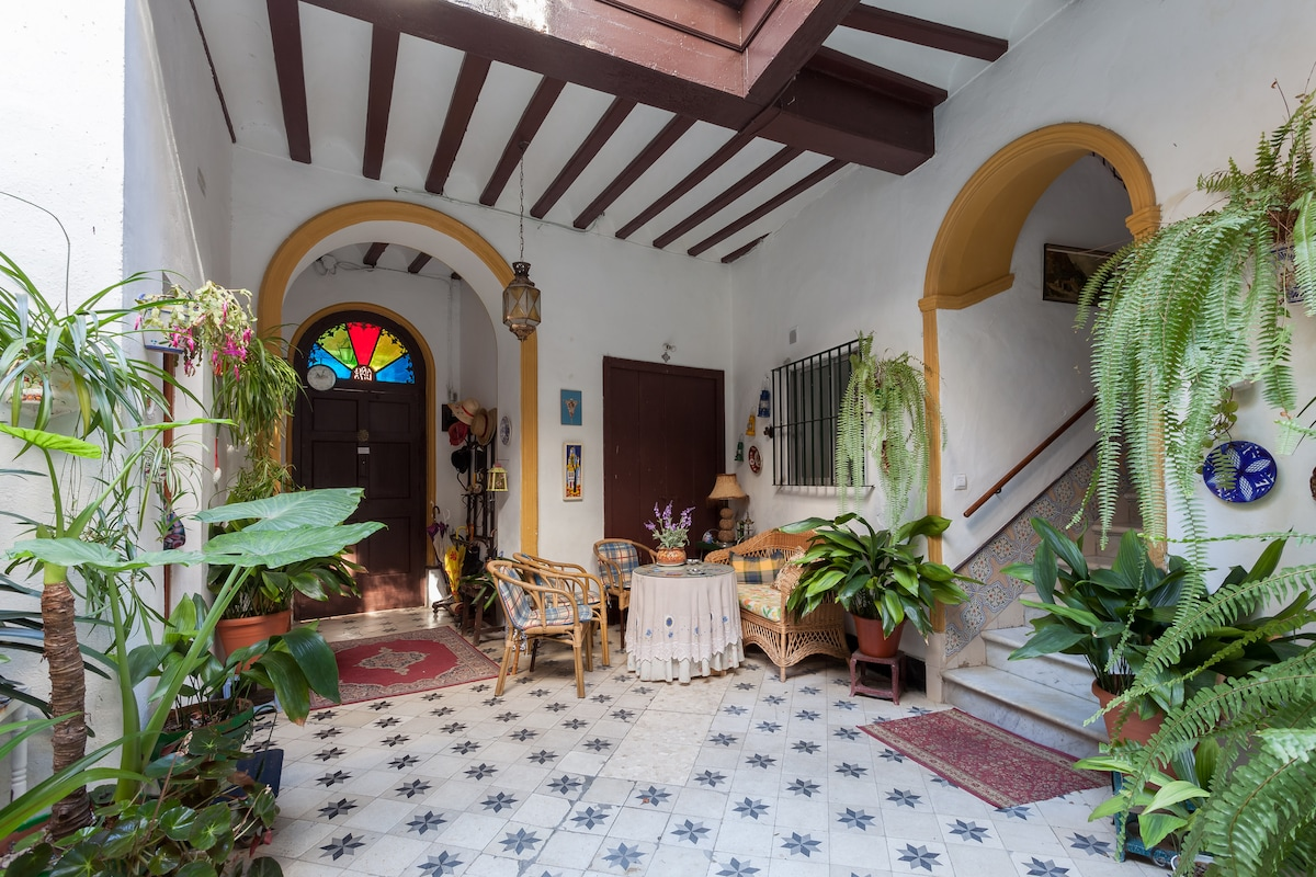Central Typical Andalusian house