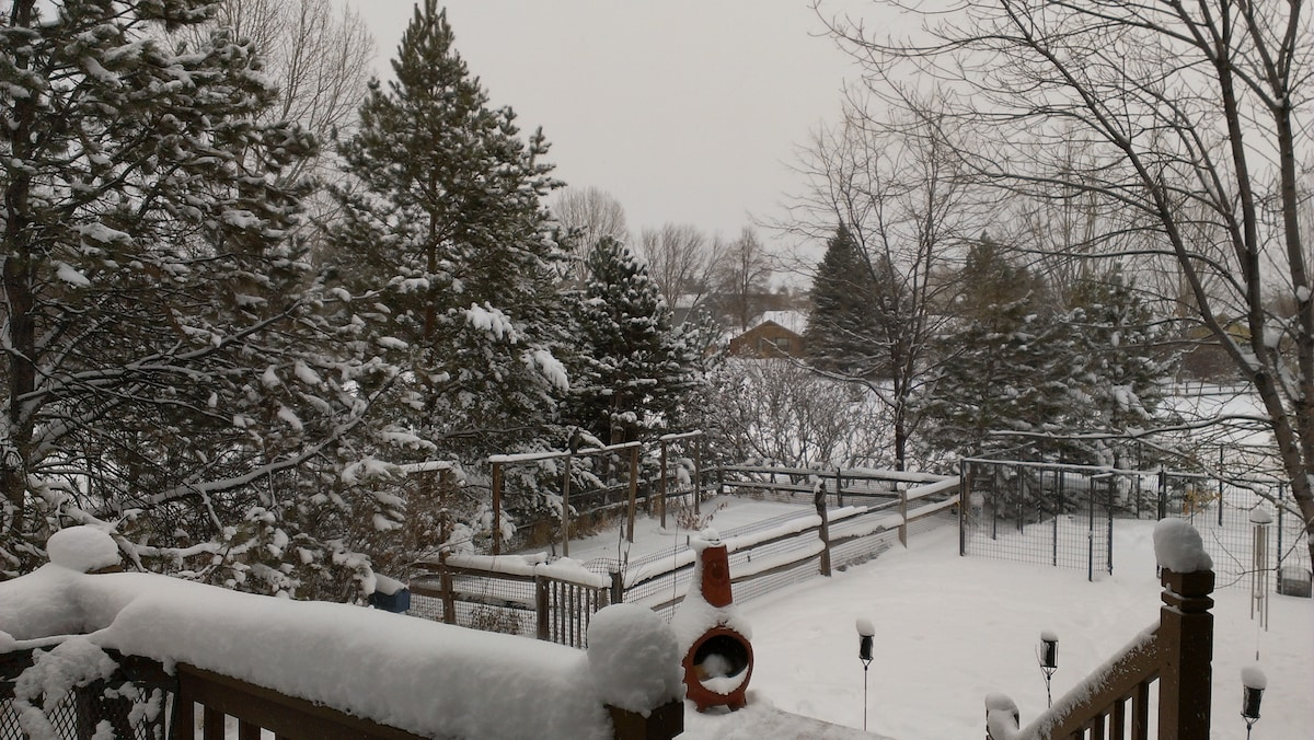 SNOWY VIEW FROM DECK