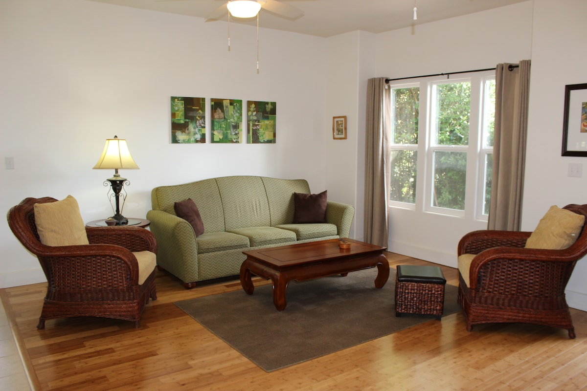 Sun-filled living room with queen size sleeper sofa.
