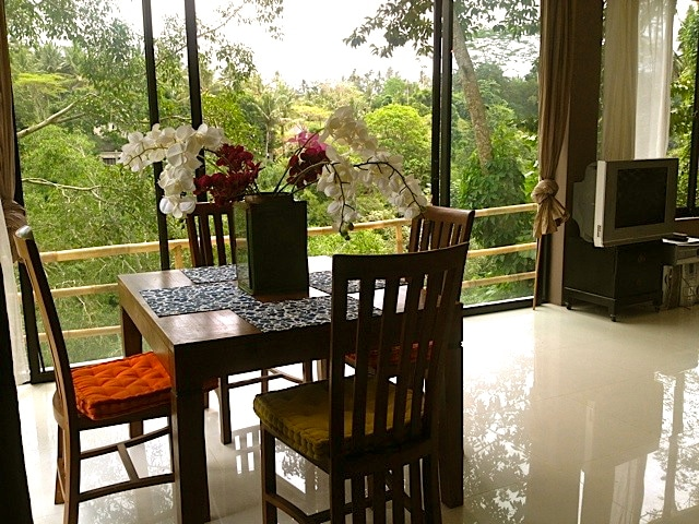Dining, reading, with a SERIOUSLY FABULOUS view to the Maya Resort across the Petanu River