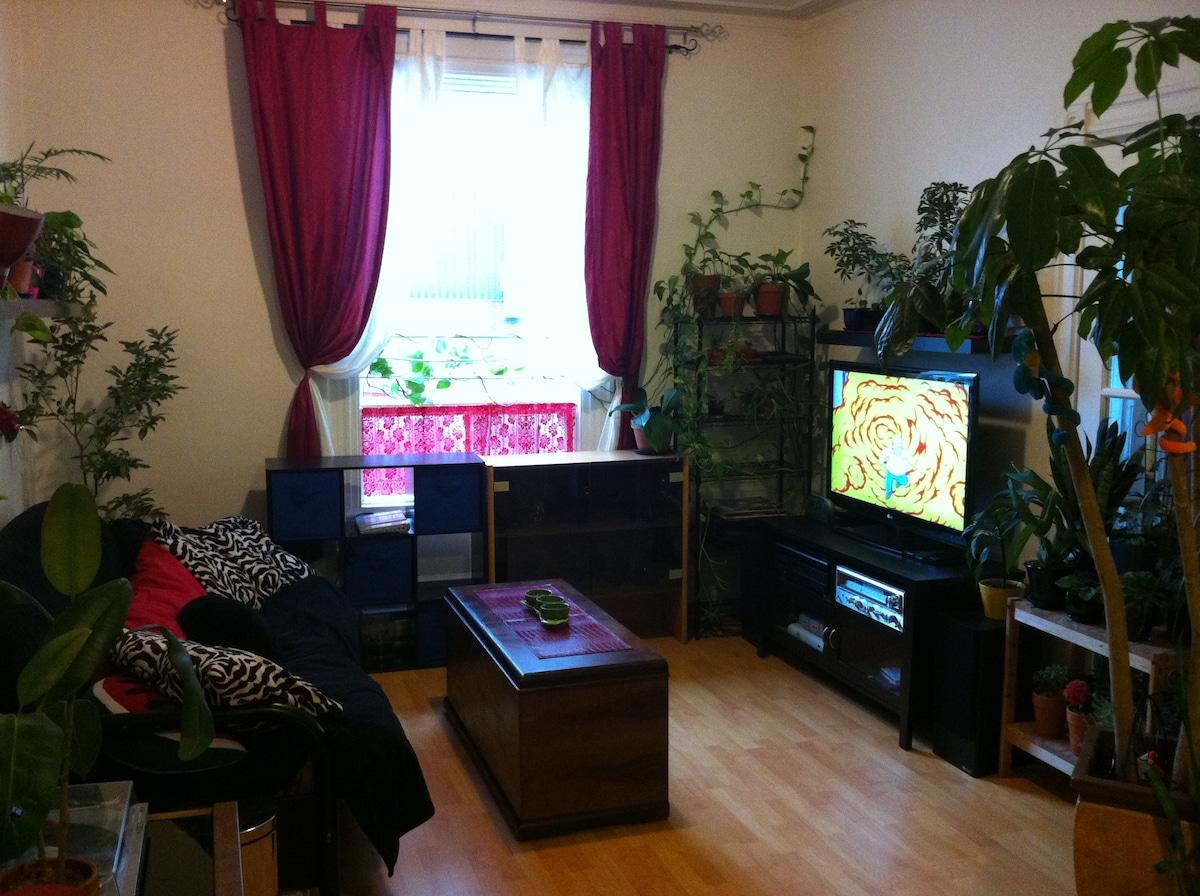 The living room and home theater: bright and warm - Le salon et le cinéma maison: lumineux et chaleureux