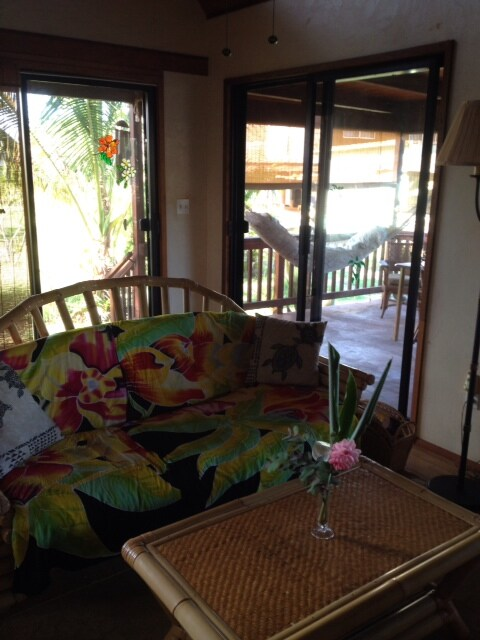 Relax downstairs or out in the hammock on the deck