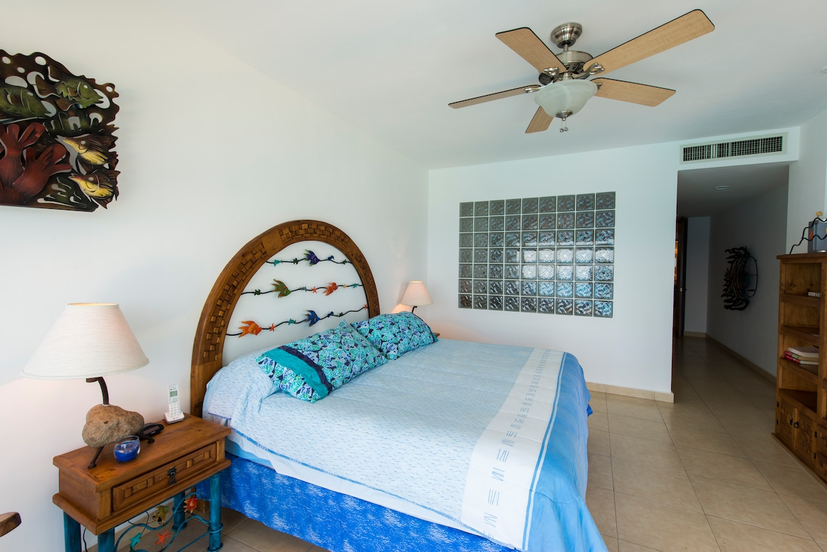 Large master bedroom with dish tv, music stereo, large dressing area, jacuzzi and shower