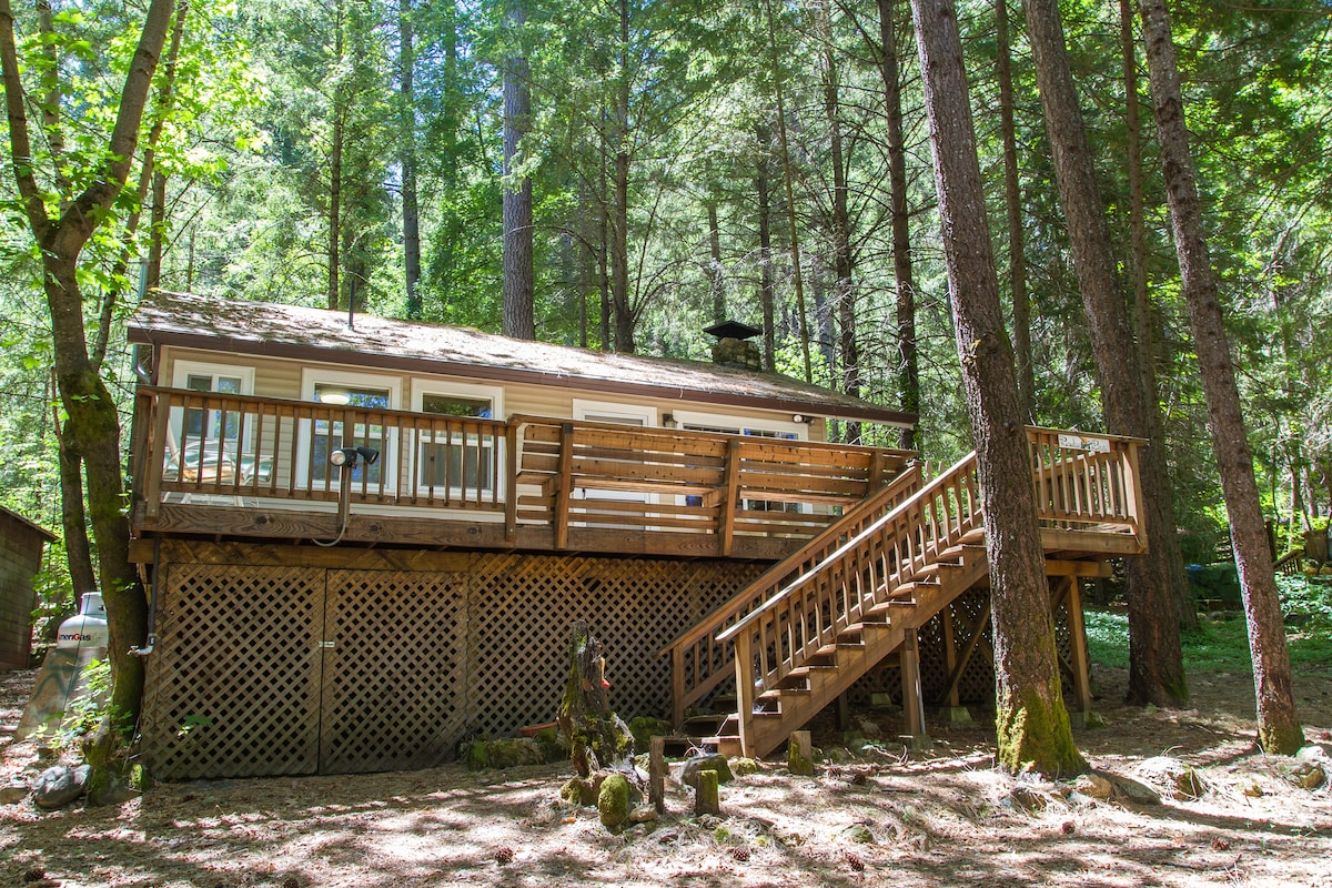 Large roomy 1 bedroom cabin with wrap around deck.