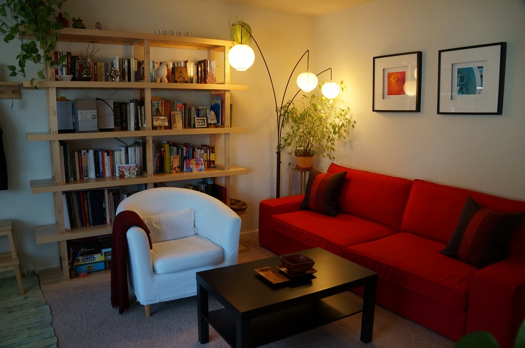Living room. The couch opens into a double bed.