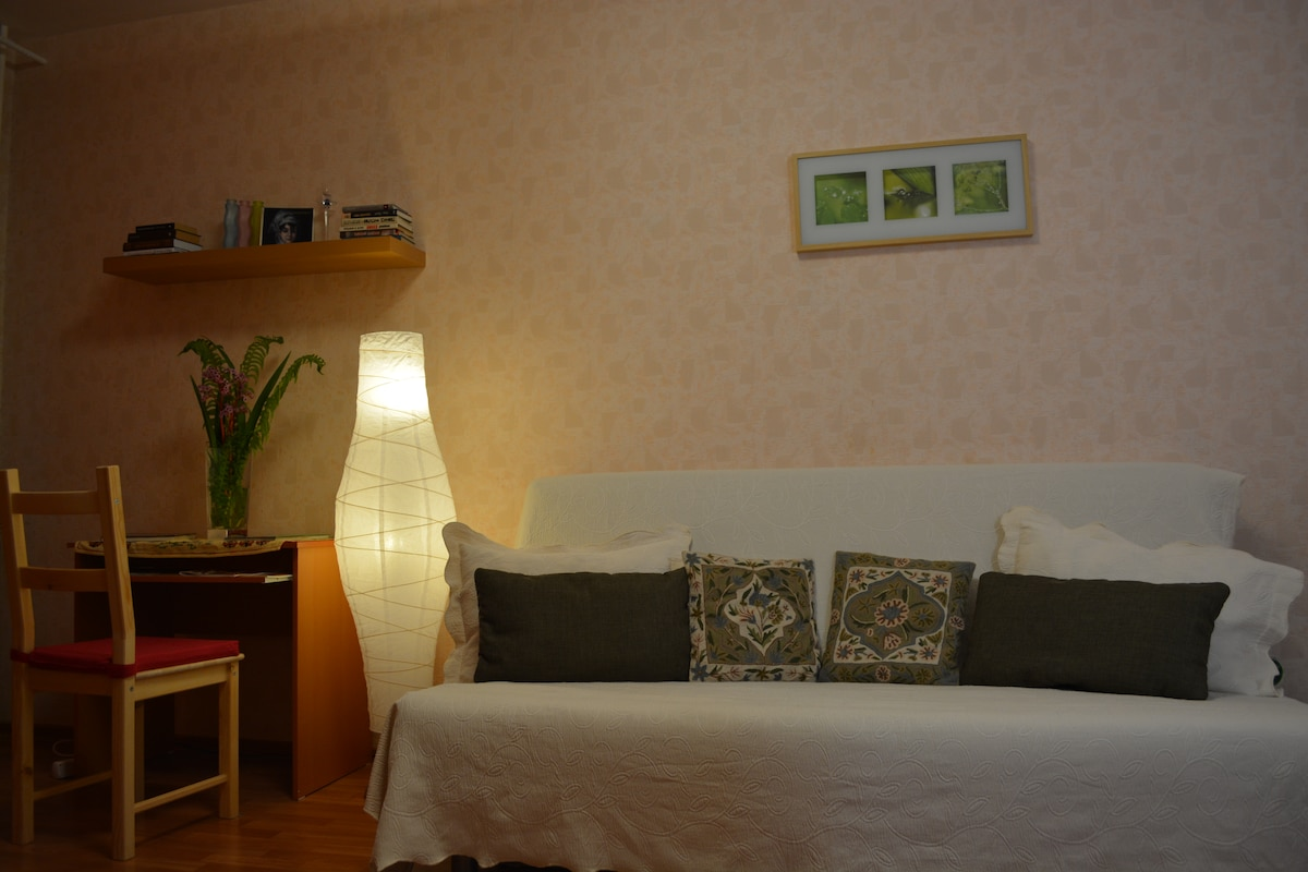 Комната 18 м.кв. -  двухспальный диван-кровать на ночь превращается в двухместную кровать 140 см на 220 см