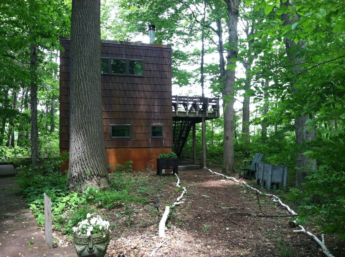 Modern Treehouse, 60 miles from Chi