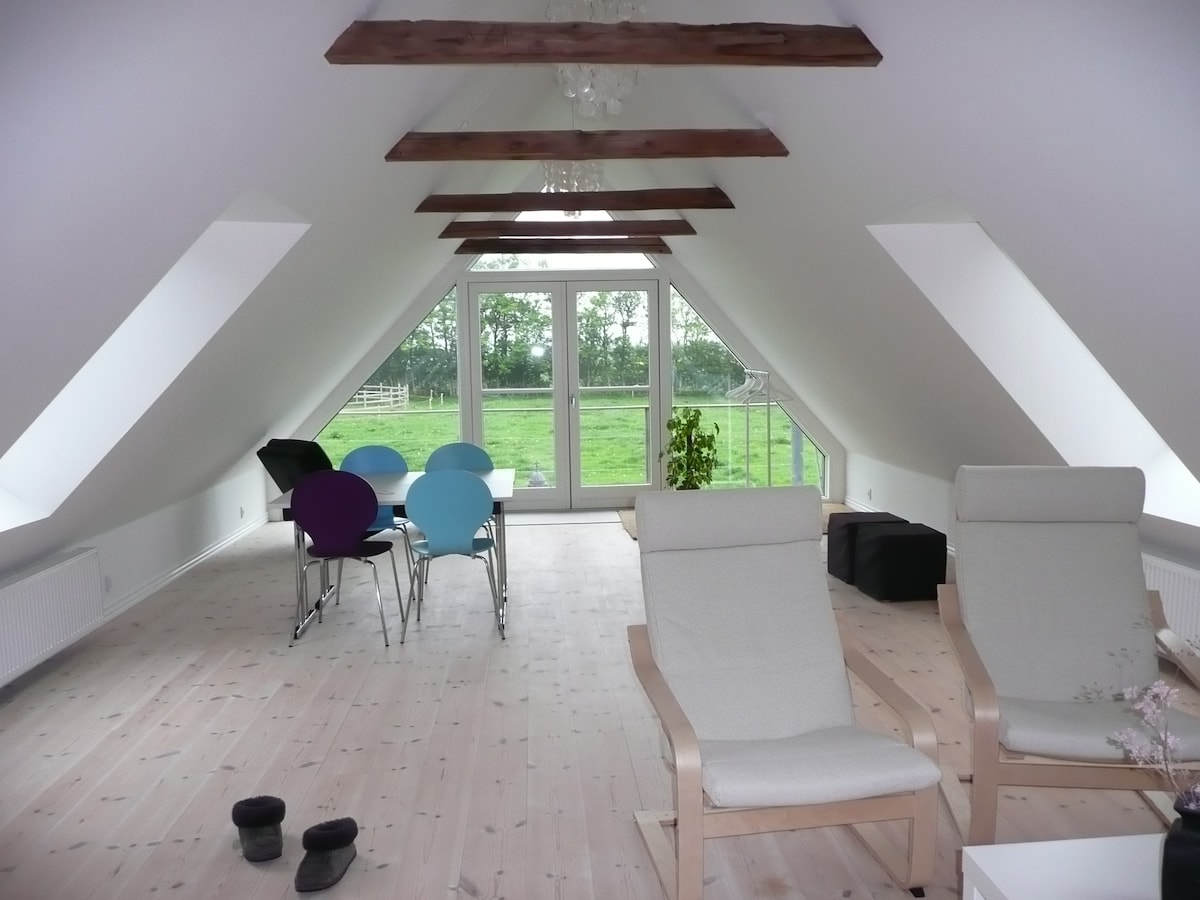A large room full of light with a nice view in a peaceful and quiet place