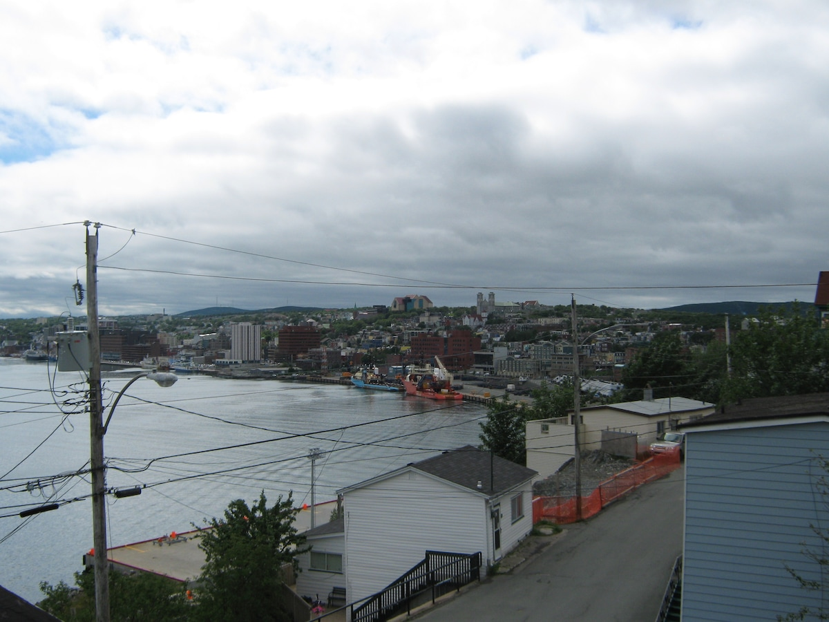 View of the City of St. John's from 1 Hipditch Hill.