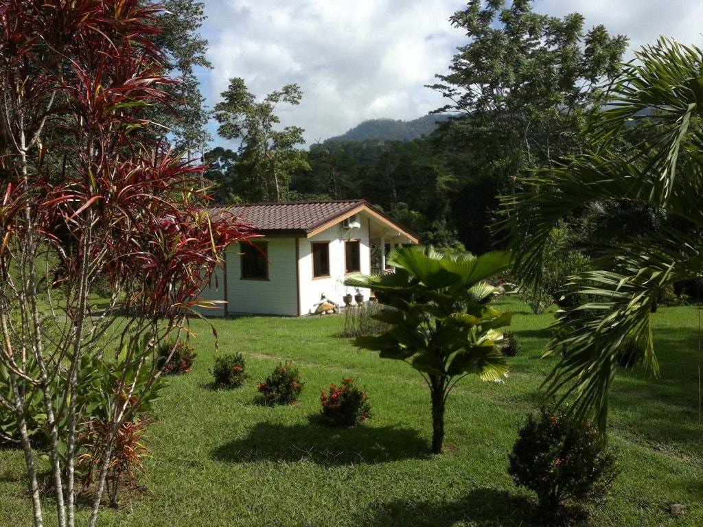 Your first view of The Garden Cottage upon entering the tropical garden property.