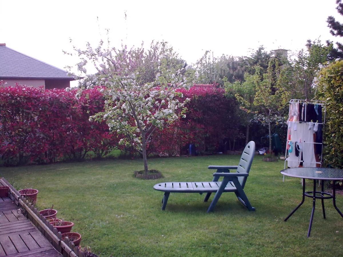 le jardin à l'arrière de la maison