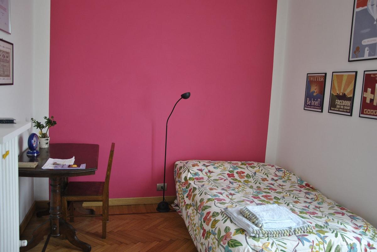 Private room in small central condo