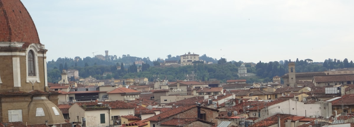 Southern view, Forte Belvedere and Boboli gardens
