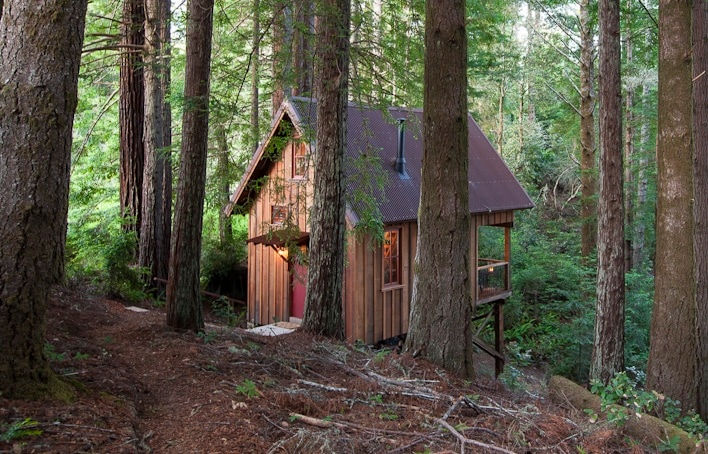 Do you dream of a treehouse sanctuary with many comfort features?