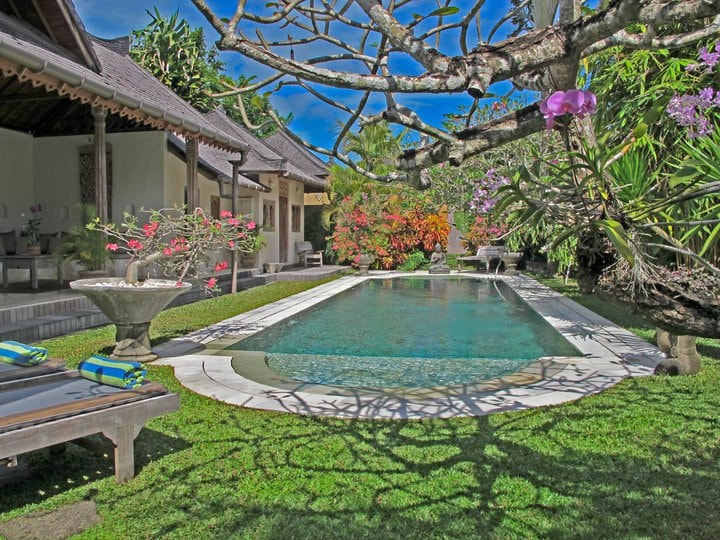 Tropical garden & pool