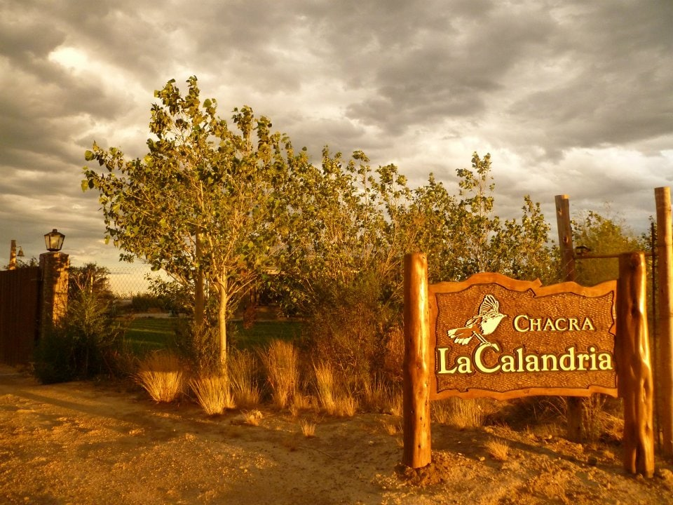 La Calandria offers its visitors lots of peace and privacy so you enjoy your best moments in El Doradillo, a quiet and isolated place practically unaltered by human intervention, which allows visitors to enjoy a wild environment and invites landscape