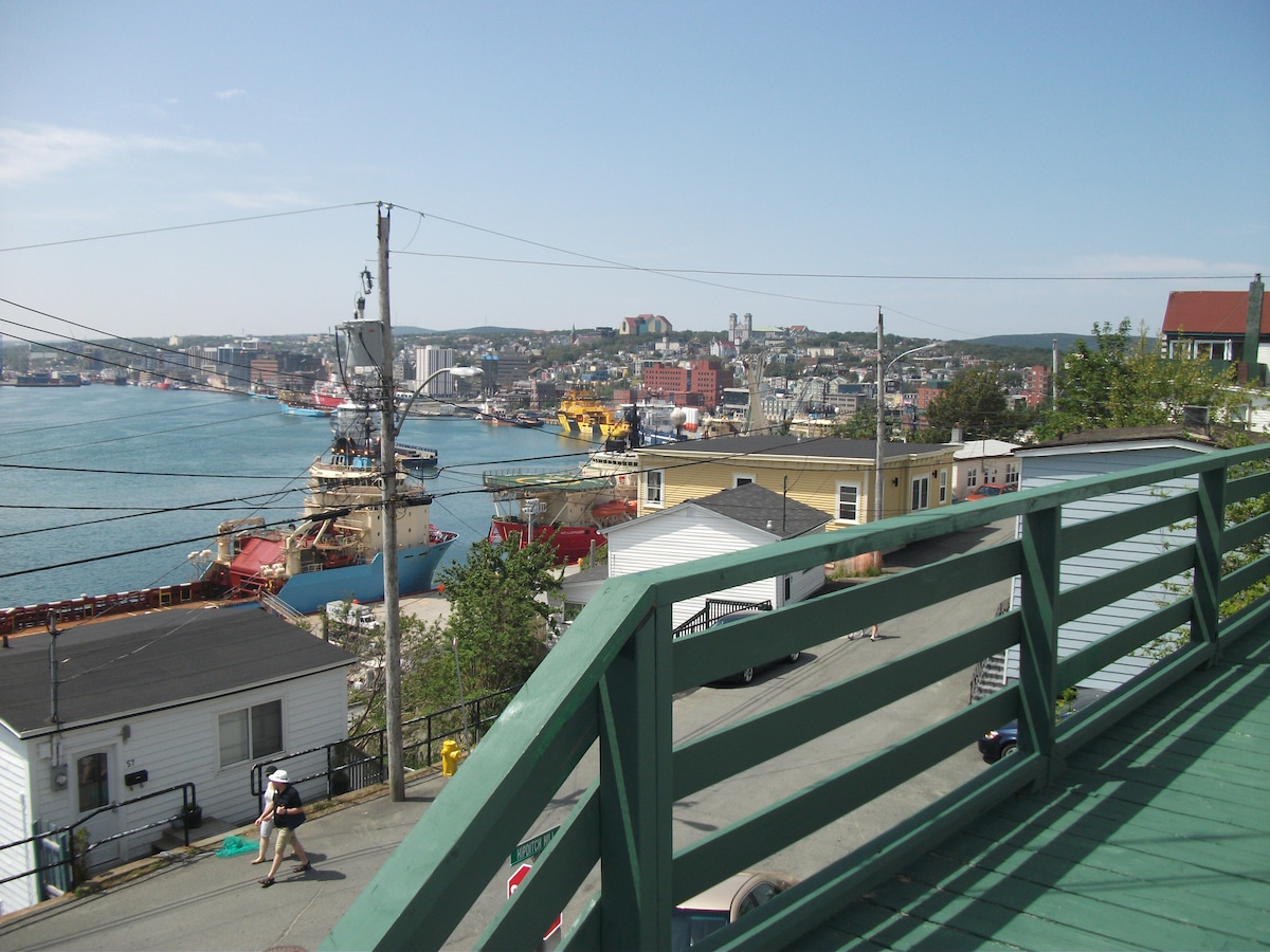 View of St. John's City and Harbour from the Front Deck
