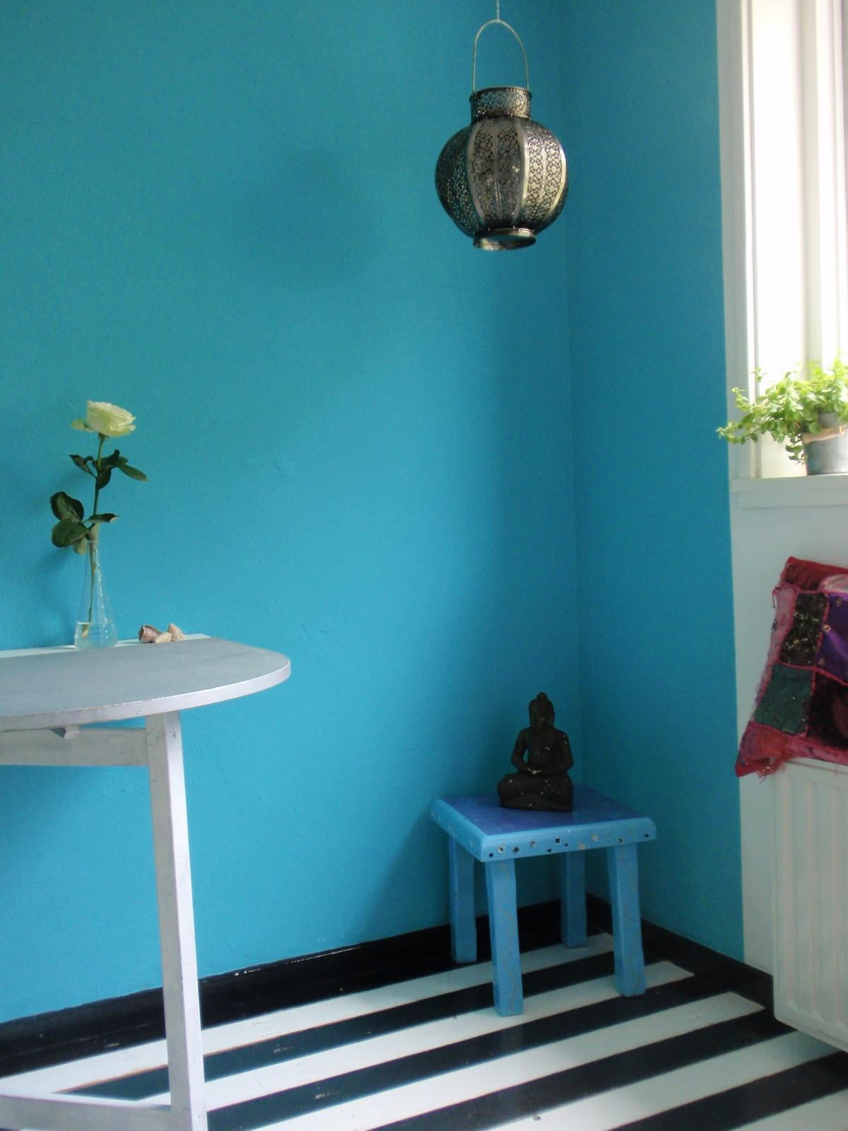 Alkmaar near city cozy private room