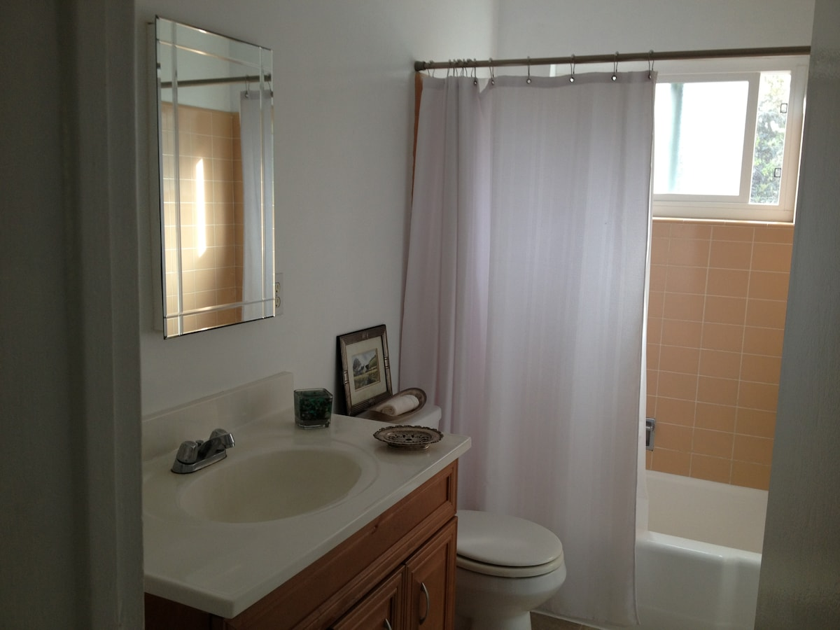 Guest bathroom with shower/tub with window out on garden