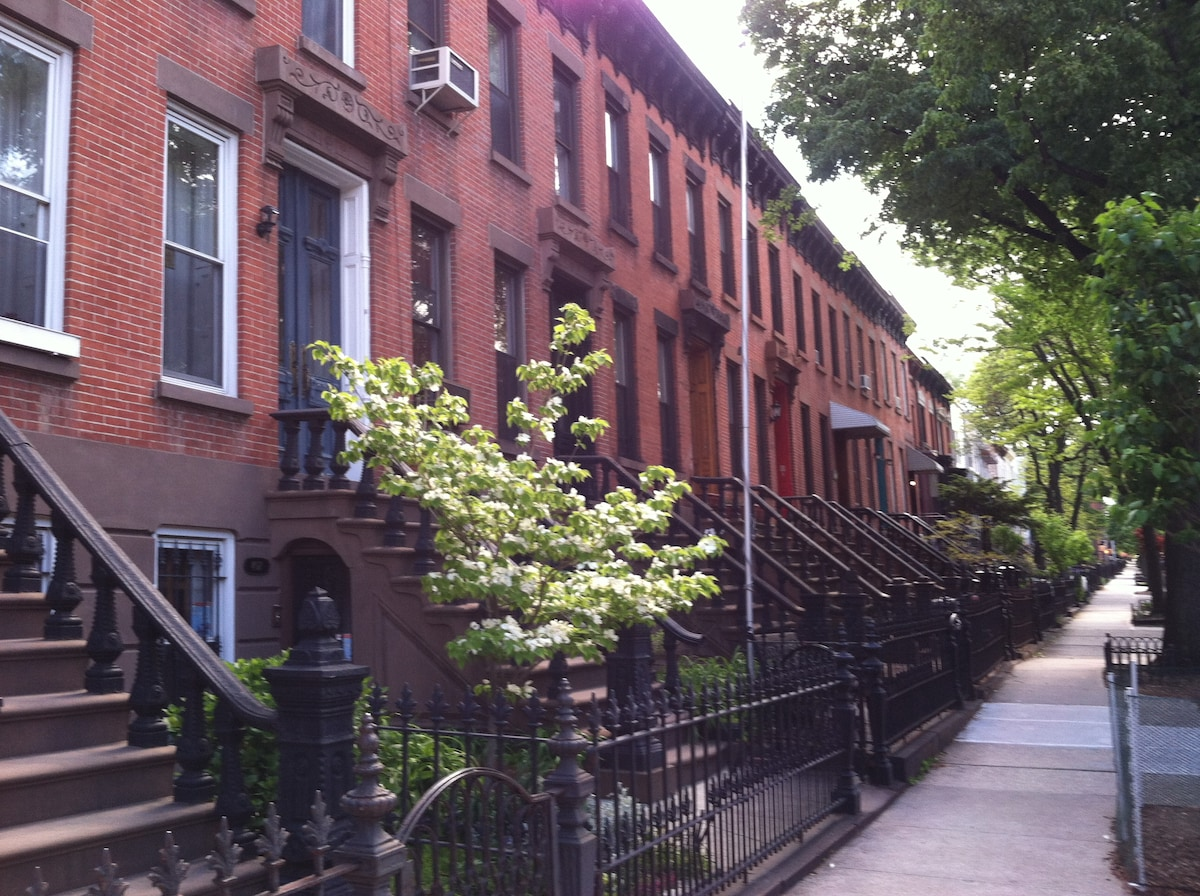 Park Slope Row Houses early 1900's Springtime.