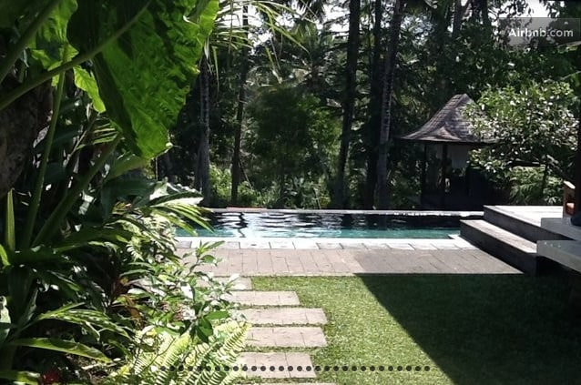 A look at the yard, pool and jungle beyond from the living room area
