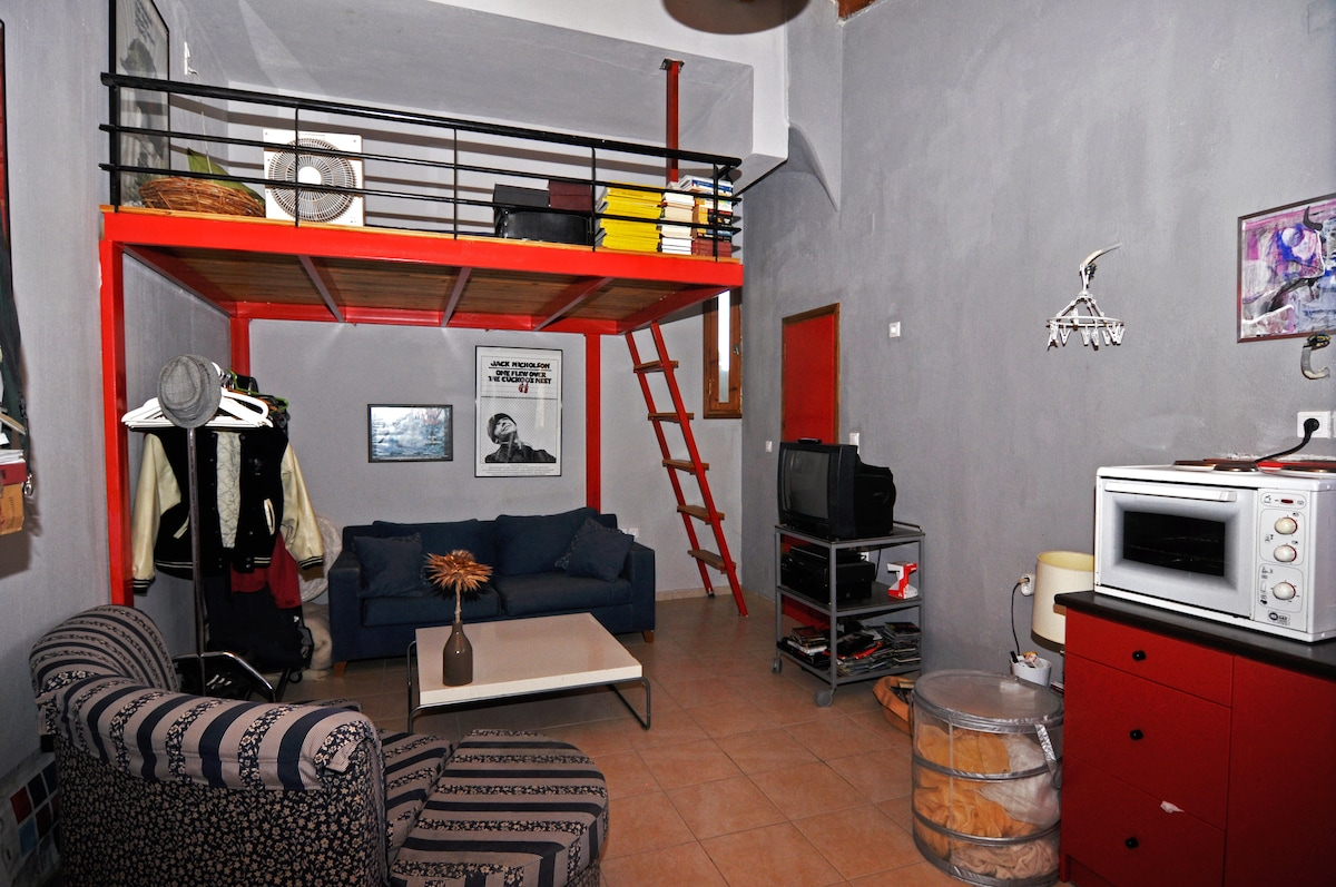 the studio with couch and double loft bed