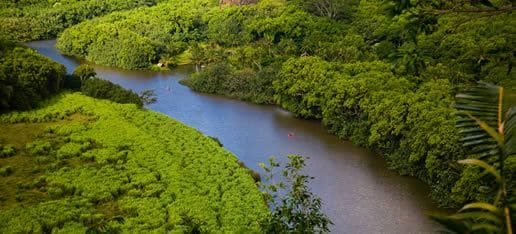 Wailua River view from Kuamoo Rd. on the drive up to our home.
