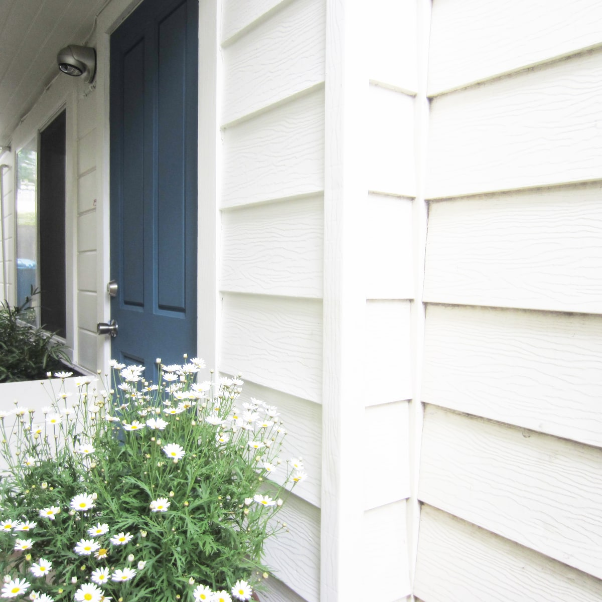 Private entry to apartment located to left of house along private walkway.