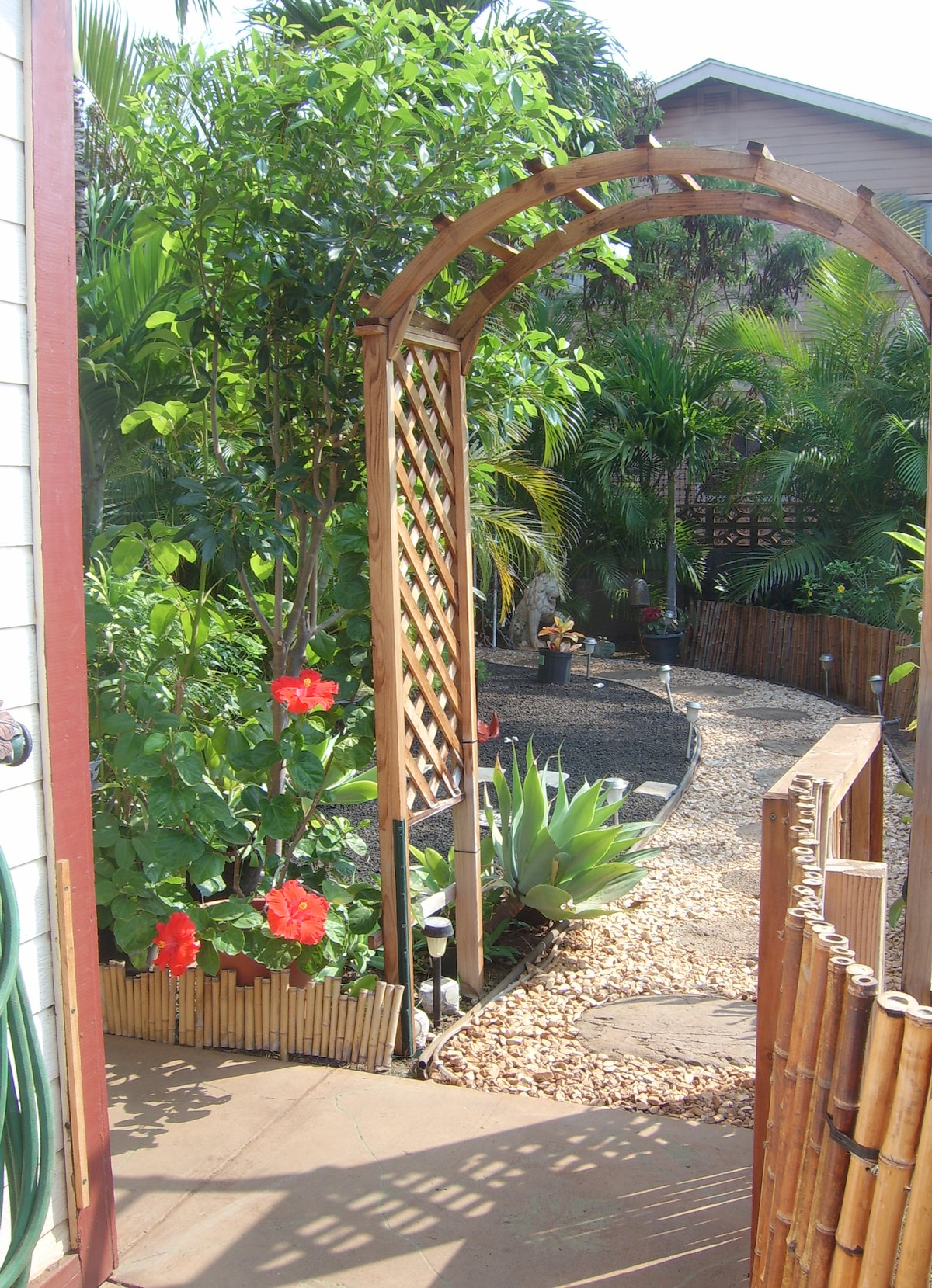 Welcome !....Enter into our Tropical Floral Oasis......