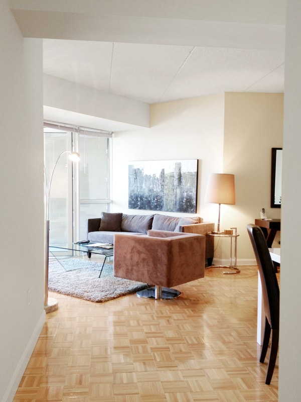 Bright and Sunny Living Room with Queen Size sofabed and New York City View
