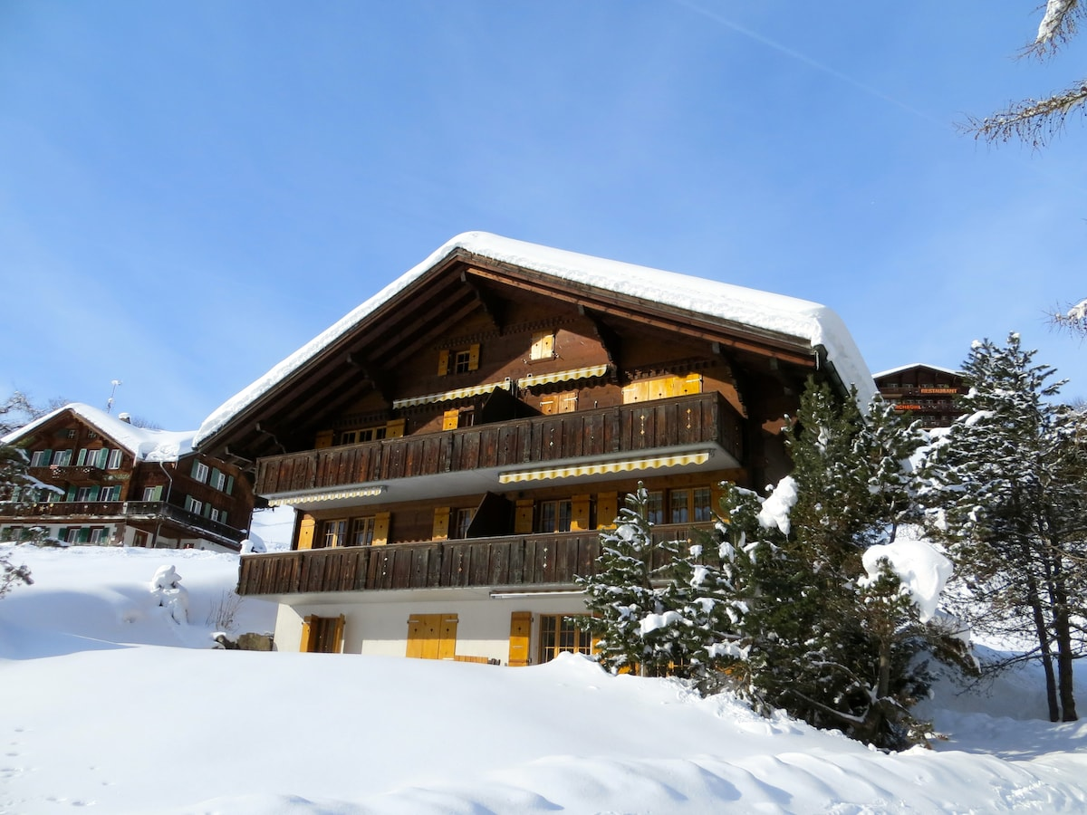 Das Chalet im Winter / The Chalet in winter time