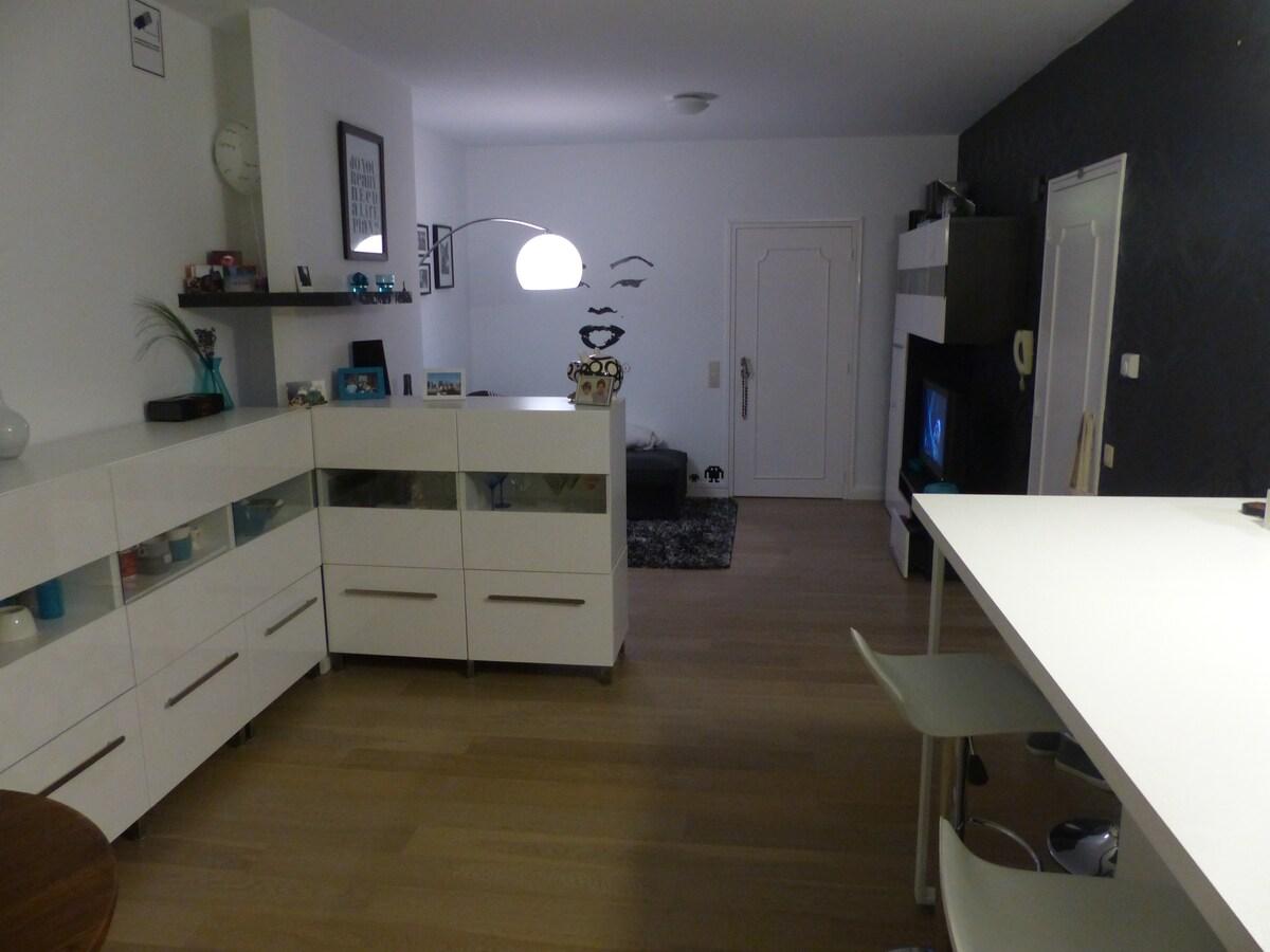 Spacious apartment center Antwerp