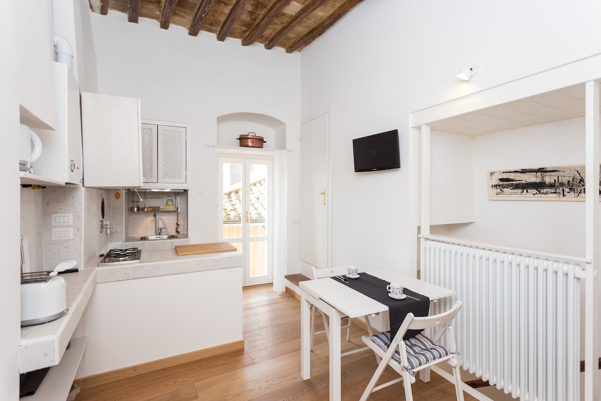 Beautiful flat in historic centre