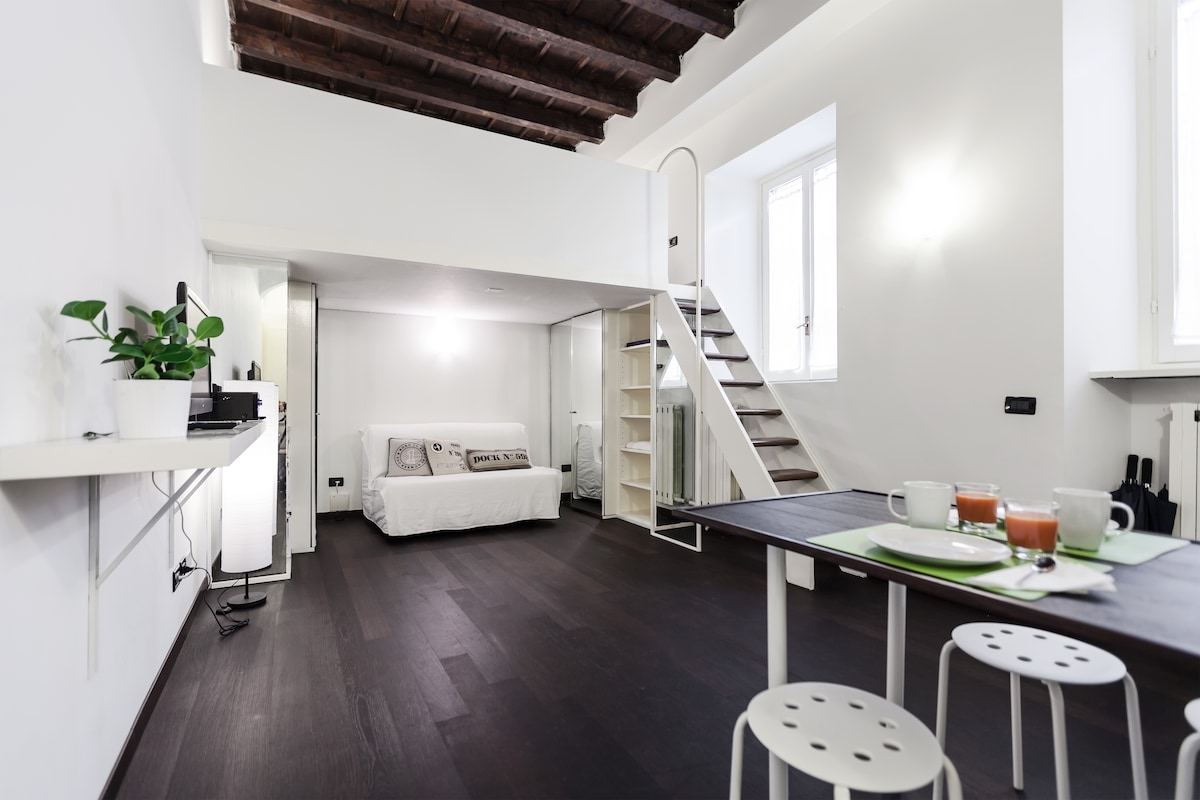 Cosy apt in the center of Milan!