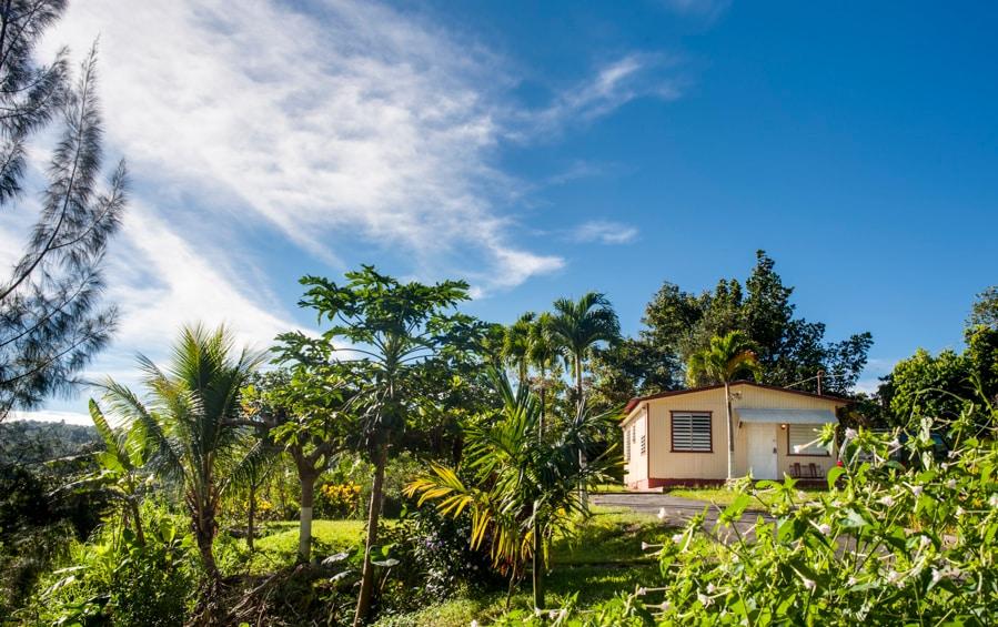 Casa Mendez -Cozy Mountain Paradise