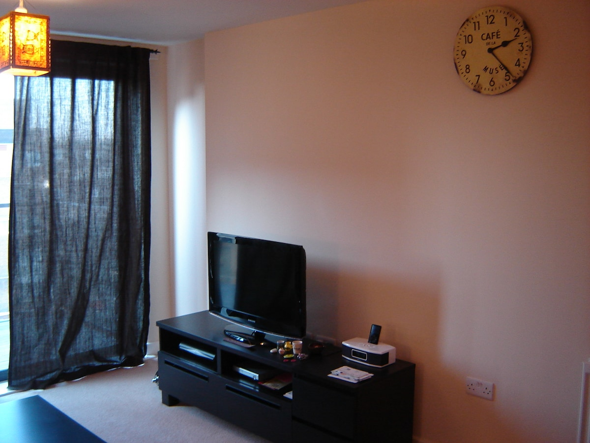 1 bedroom apartment close to centre