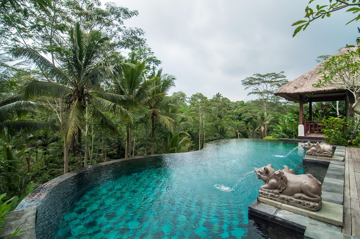 Villa Amrita Pool and Forest view