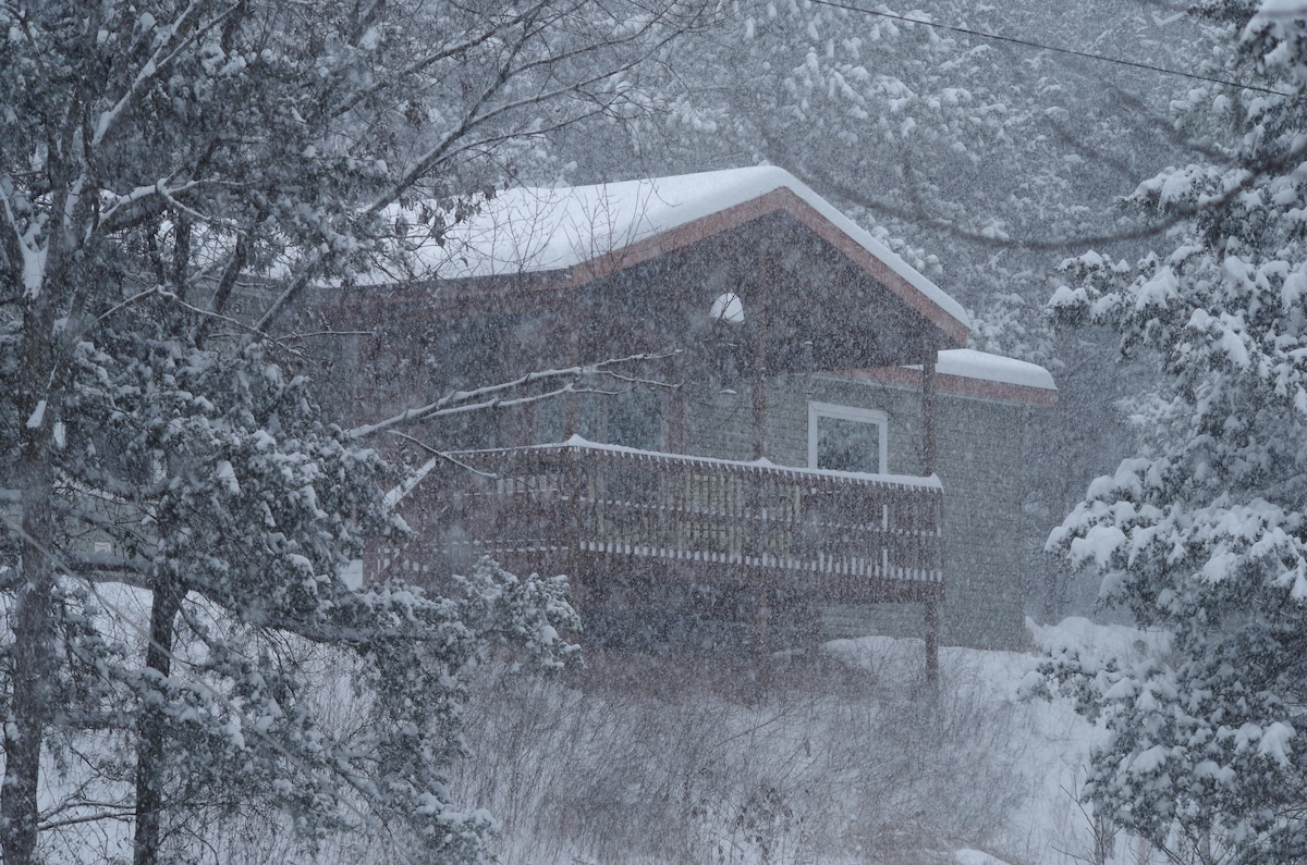 A rare winter snow storm blankets the Ozarks and Three Pines.