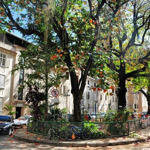 Cozy duplex in the nicest street