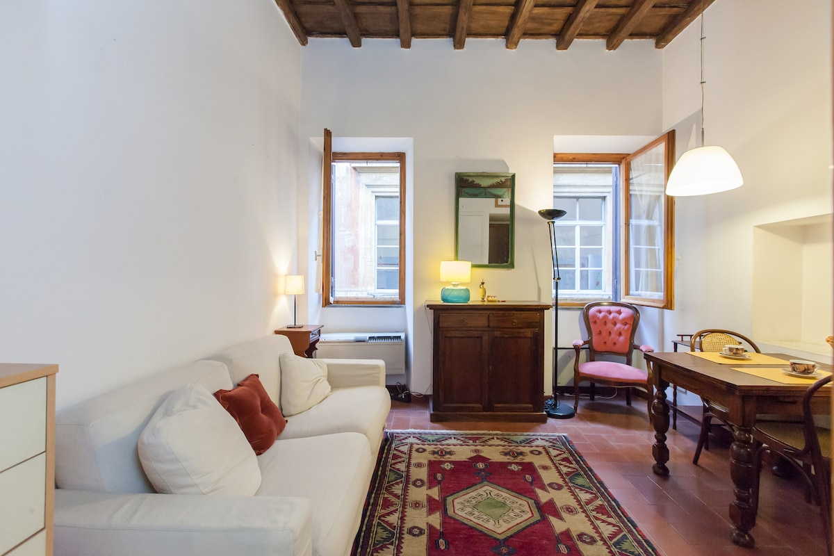 Spanish Steps Apartment Free Wifi