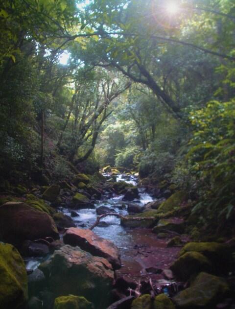 Disfuta del maravilloso Río Poás, sus posas y hermosa catarata