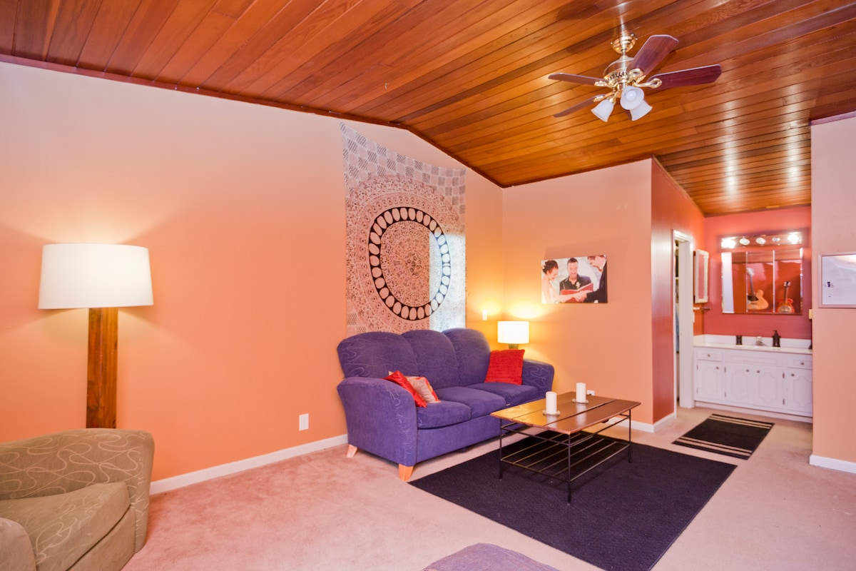 Master suite with comfy couch, walk-in closet and private bathroom
