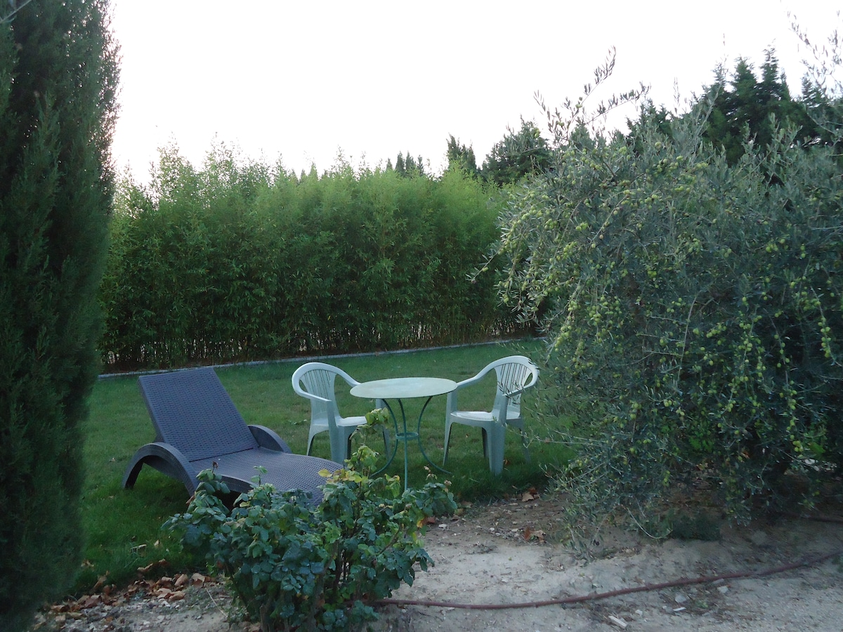 Mas en Provence Alpilles - Arles