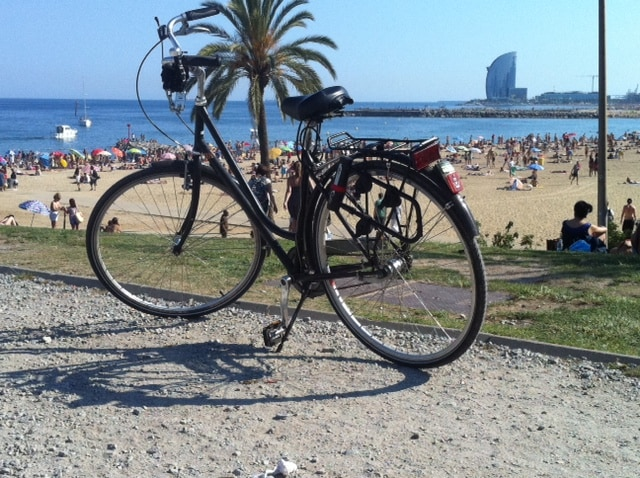 ENJOY THE CITY WITH MY BICYCLES!!!