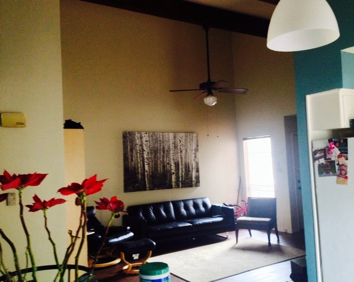 2BD Apartment minutes from SXSW
